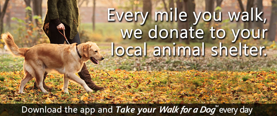 Walk for a Dog home1
