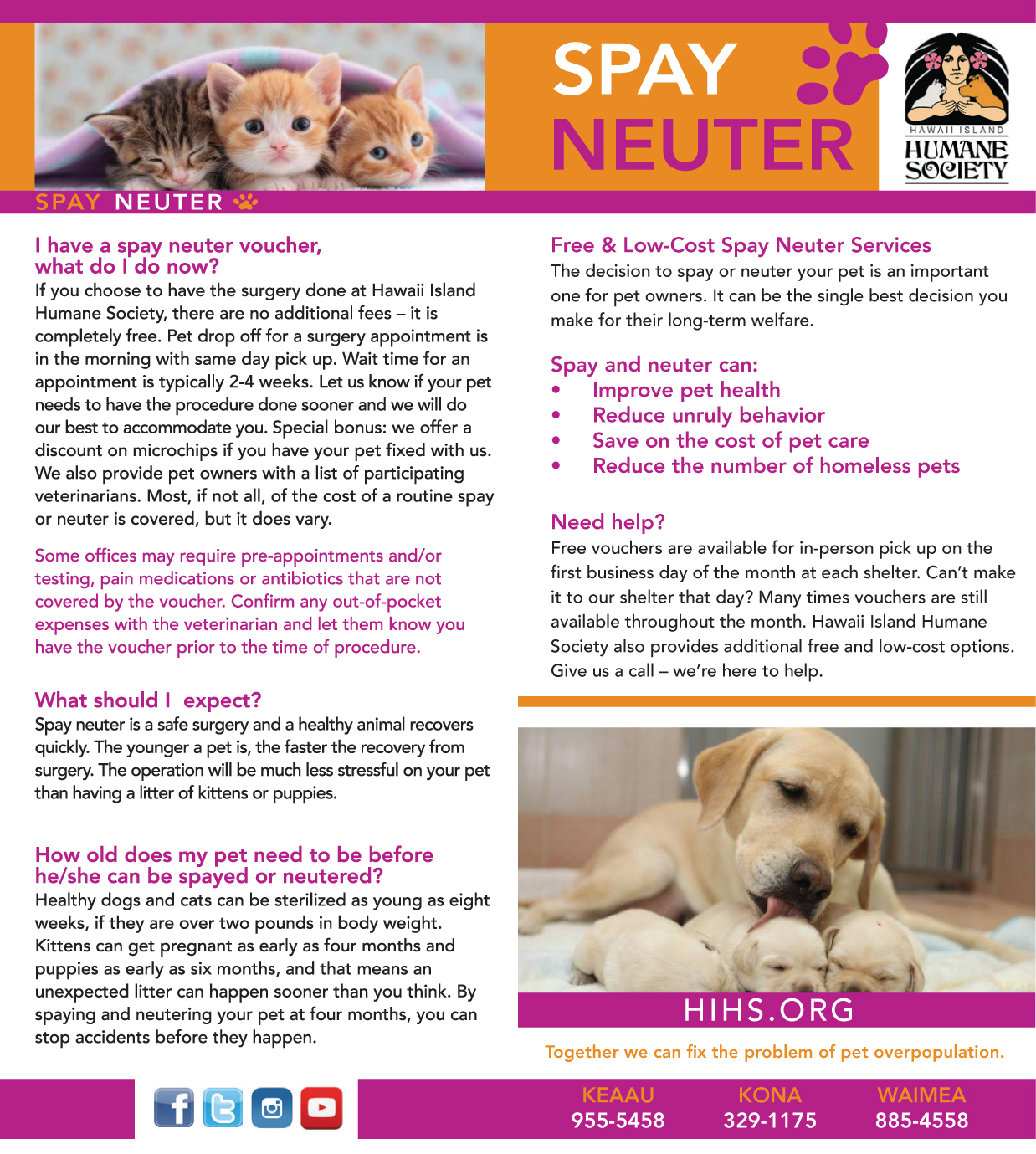 spay neutering your pets I have heard many arguments for not spaying and neutering a pet but, these arguments fall short of reason spay/neuter your pet by staff reports email the author.