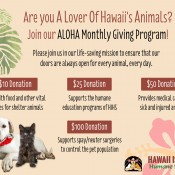 ALOHA Monthly Giving Program
